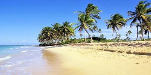 Salmonella and shigella reported at Dominican resort the Barcelo Bavaro Palace Deluxe