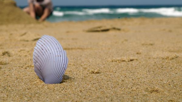 Gastroenteritis ruins holidays at the Palm Wings Ephesus Beach Resort in Turkey